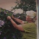 M Arina, 57 лет