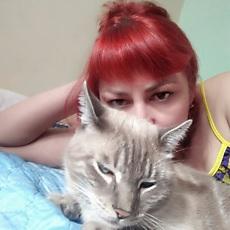 Фотография девушки Черная Мамба, 39 лет из г. Хабаровск